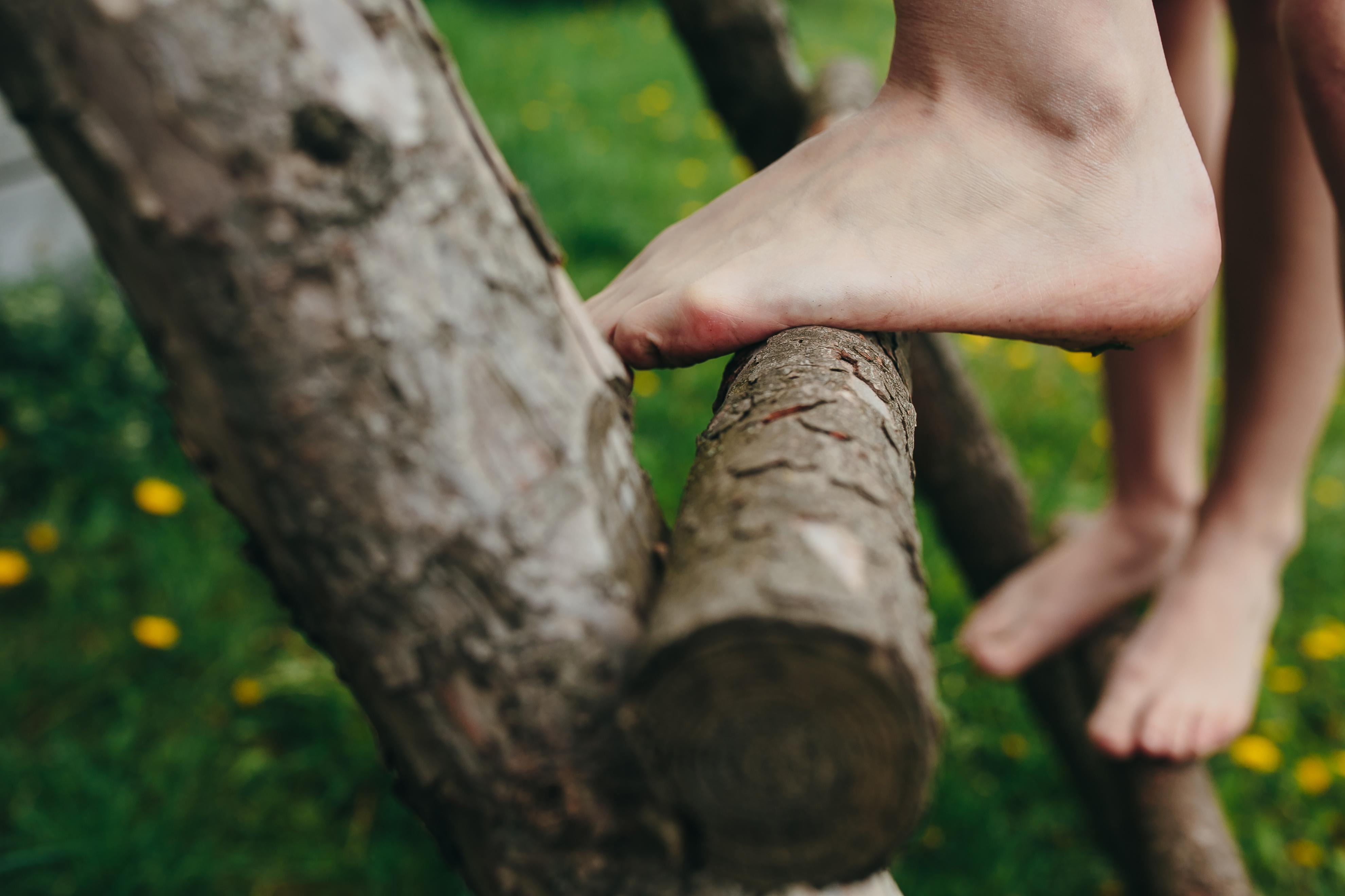 Course Image Het boomhutgevoel – Over inspirerend (project)leiderschap | DI 25 augustus 2020