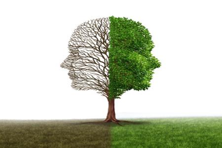 Course Image Een positieve Mind-Reset | DO 5 Nov 2020